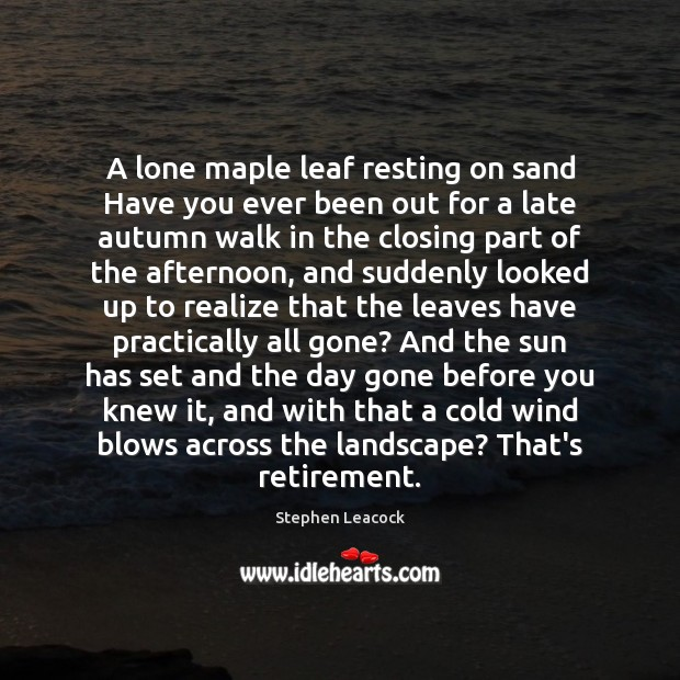 A lone maple leaf resting on sand Have you ever been out Stephen Leacock Picture Quote