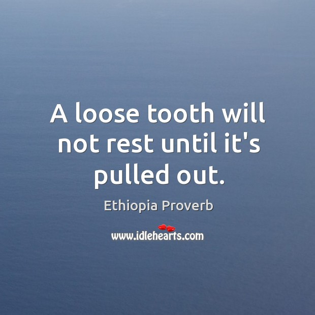 A loose tooth will not rest until it's pulled out. Ethiopia Proverbs Image