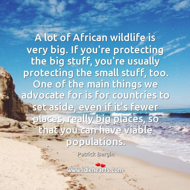 Image, A lot of African wildlife is very big. If you're protecting the