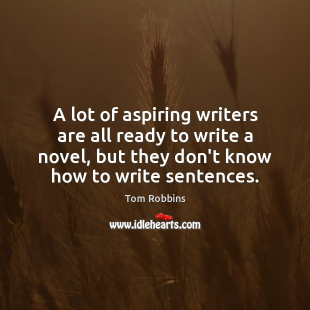 A lot of aspiring writers are all ready to write a novel, Image