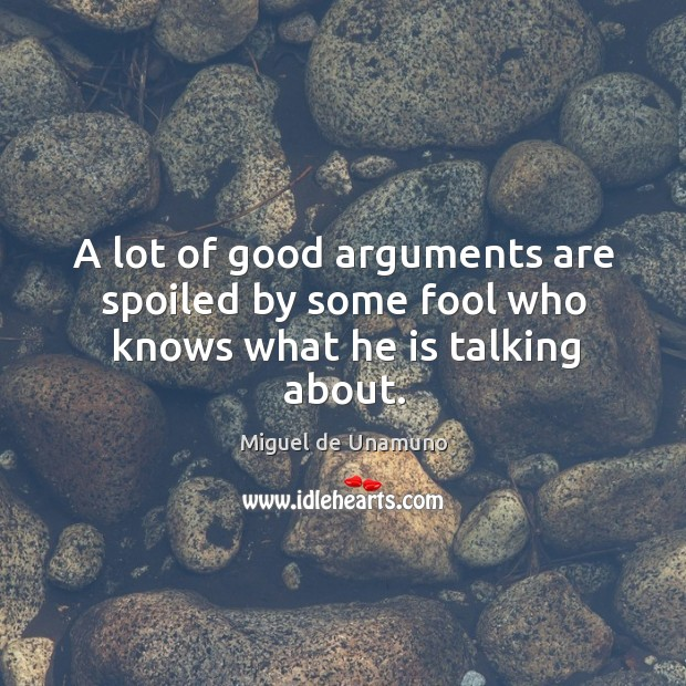 Image, A lot of good arguments are spoiled by some fool who knows what he is talking about.