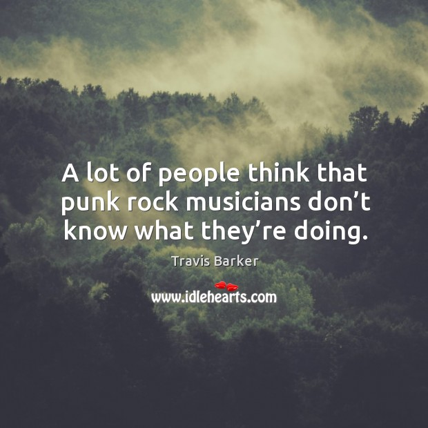 A lot of people think that punk rock musicians don't know what they're doing. Image
