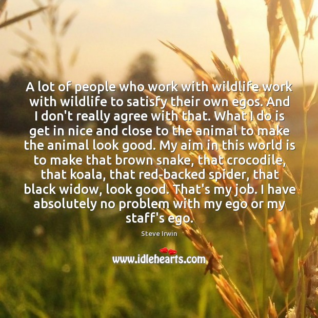A lot of people who work with wildlife work with wildlife to Image