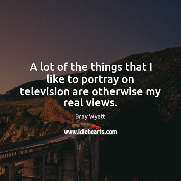 Image, A lot of the things that I like to portray on television are otherwise my real views.