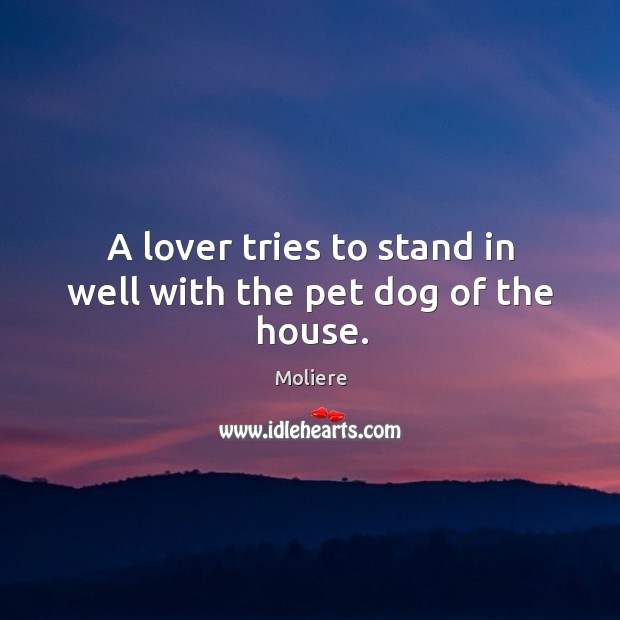 A lover tries to stand in well with the pet dog of the house. Image