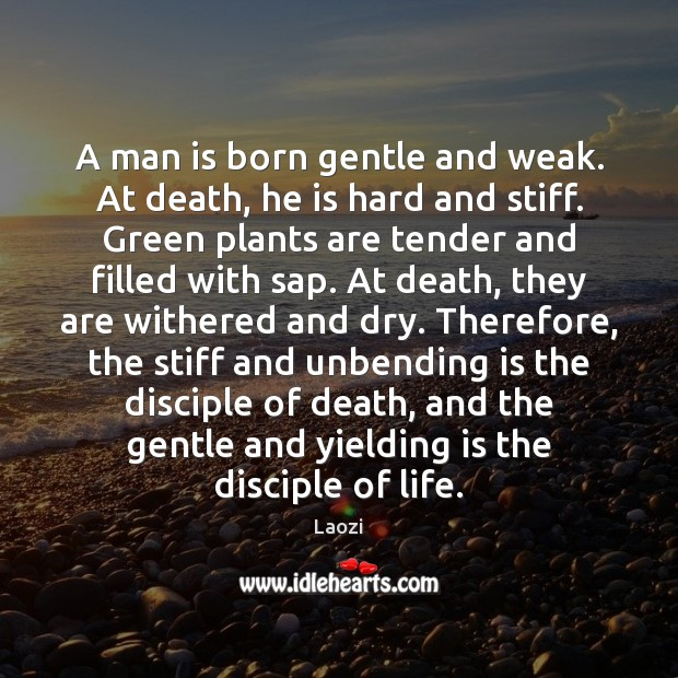 A man is born gentle and weak. At death, he is hard Image