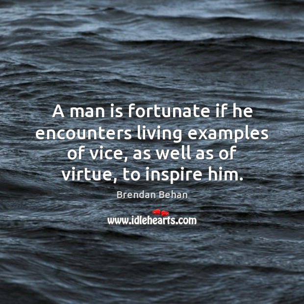 Image, A man is fortunate if he encounters living examples of vice, as