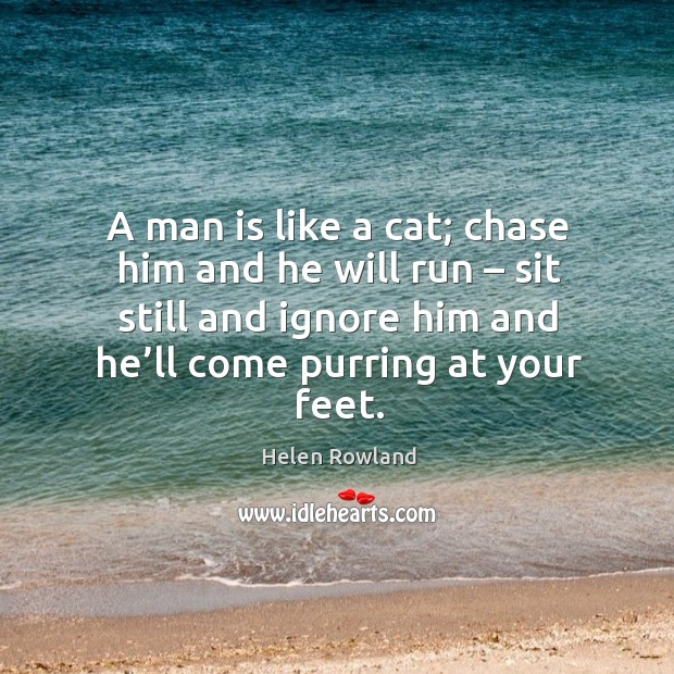 Image, A man is like a cat; chase him and he will run – sit still and ignore him and he'll come purring at your feet.