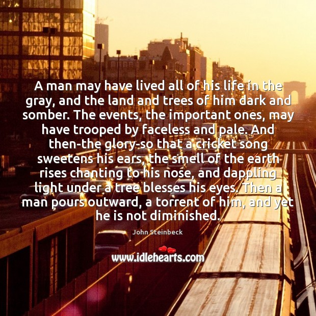 A man may have lived all of his life in the gray, John Steinbeck Picture Quote