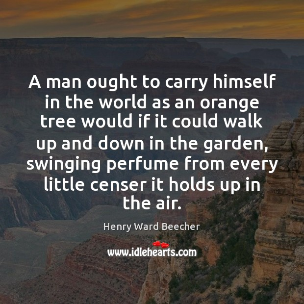 Image, A man ought to carry himself in the world as an orange