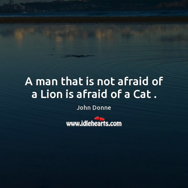Image, A man that is not afraid of a Lion is afraid of a Cat .