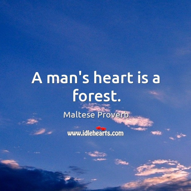 Image, A man's heart is a forest.