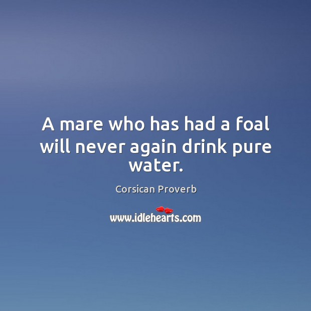 A mare who has had a foal will never again drink pure water. Image