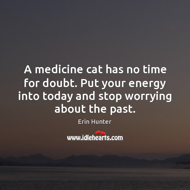 A medicine cat has no time for doubt. Put your energy into Erin Hunter Picture Quote