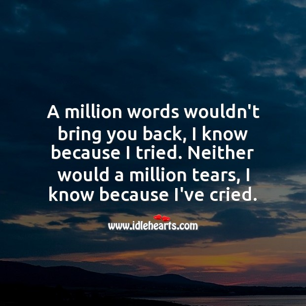 A million words wouldn't bring you back, I know because I tried. Sad Love Messages Image