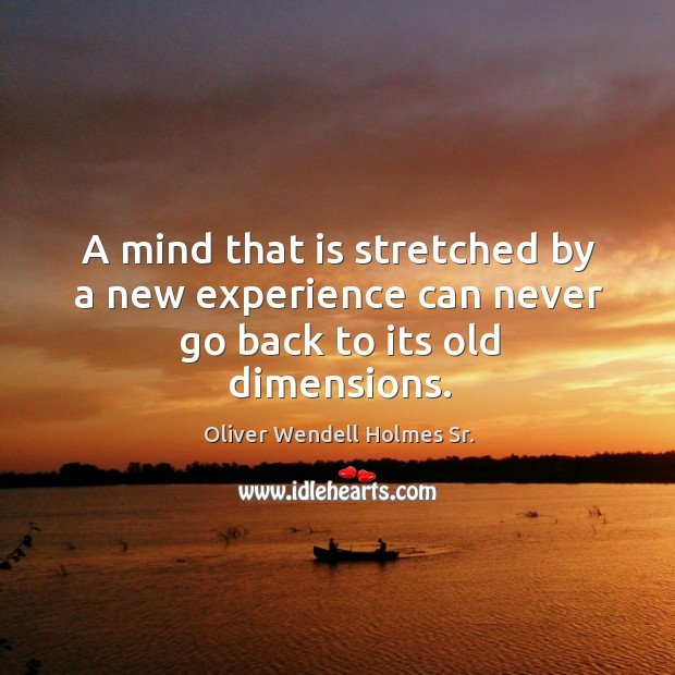 A mind that is stretched by a new experience can never go back to its old dimensions. Image