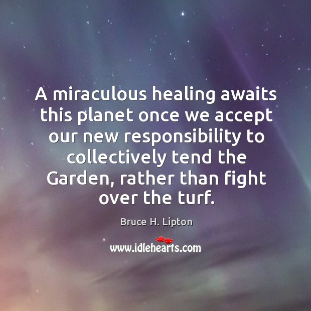 A miraculous healing awaits this planet once we accept our new responsibility Bruce H. Lipton Picture Quote