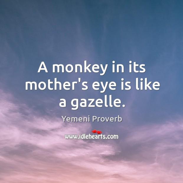 Image, A monkey in its mother's eye is like a gazelle.