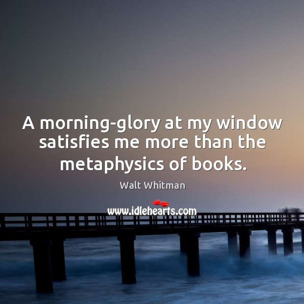 A morning-glory at my window satisfies me more than the metaphysics of books. Image