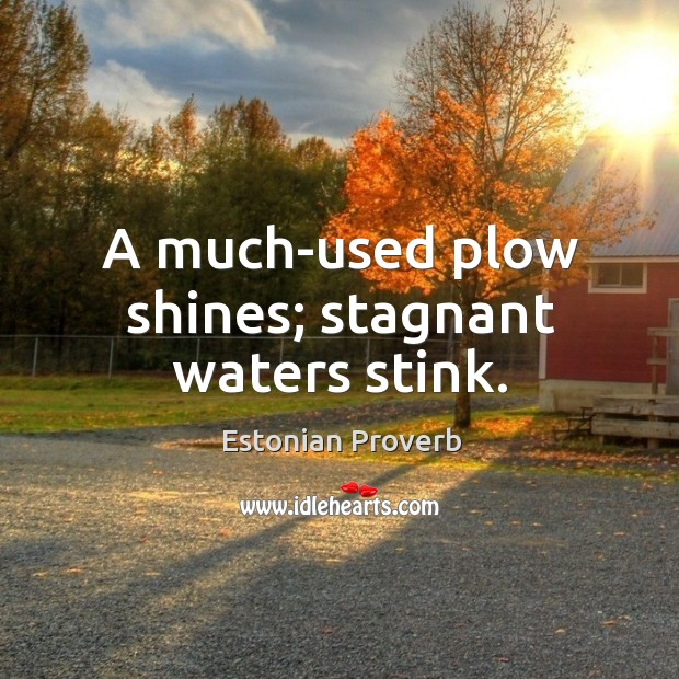 Image, A much-used plow shines; stagnant waters stink.