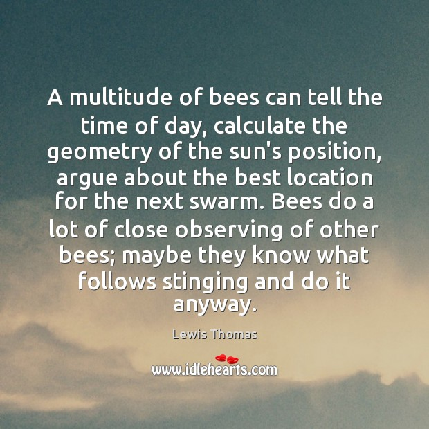 A multitude of bees can tell the time of day, calculate the Image