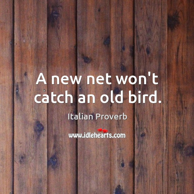 A new net won't catch an old bird. Image