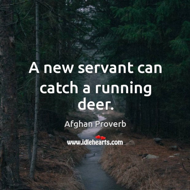 Image, A new servant can catch a running deer.