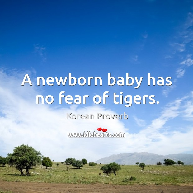 Image, A newborn baby has no fear of tigers.