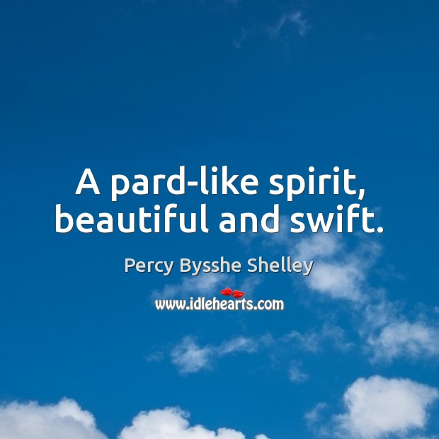 A pard-like spirit, beautiful and swift. Percy Bysshe Shelley Picture Quote