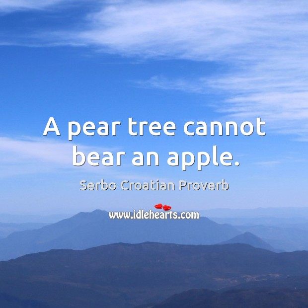 A pear tree cannot bear an apple. Serbo Croatian Proverbs Image