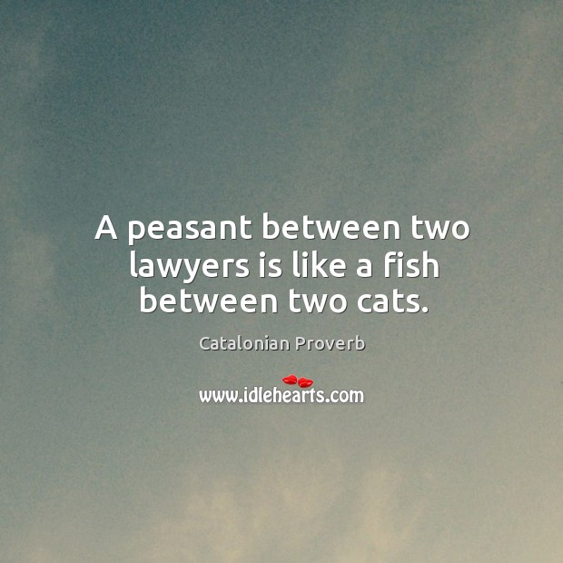 A peasant between two lawyers is like a fish between two cats. Catalonian Proverbs Image
