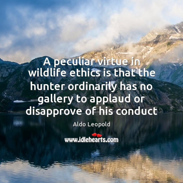 Image, A peculiar virtue in wildlife ethics is that the hunter ordinarily has