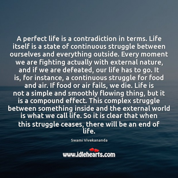 A perfect life is a contradiction in terms. Life itself is a Image