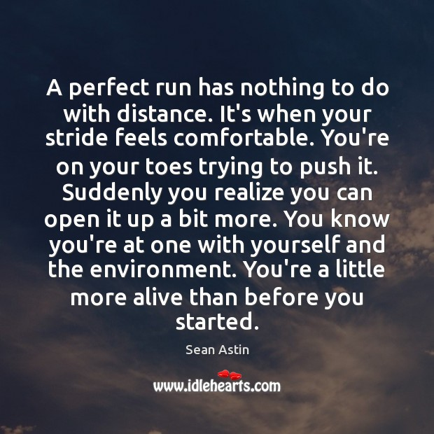 A perfect run has nothing to do with distance. It's when your Image
