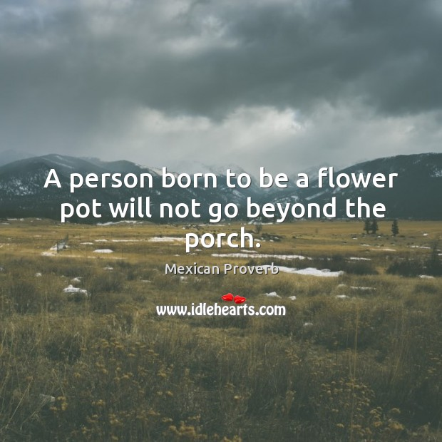 Image, A person born to be a flower pot will not go beyond the porch.