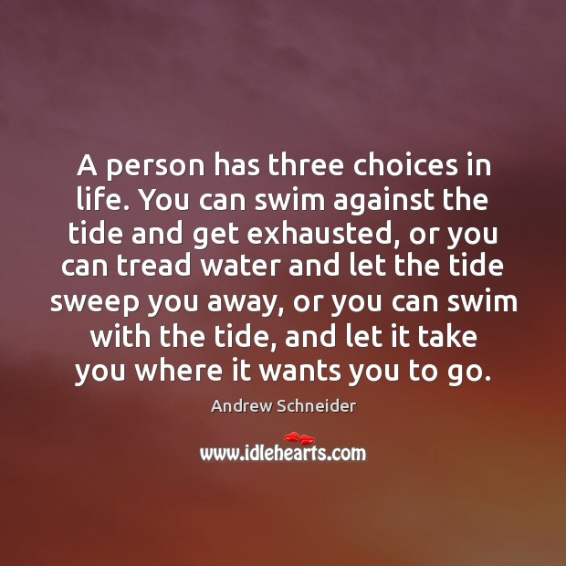 Image, A person has three choices in life. You can swim against the