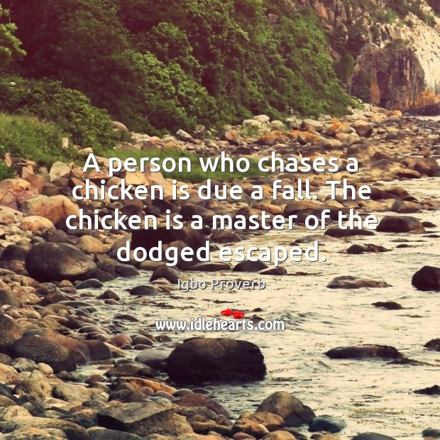 A person who chases a chicken is due a fall. Igbo Proverbs Image