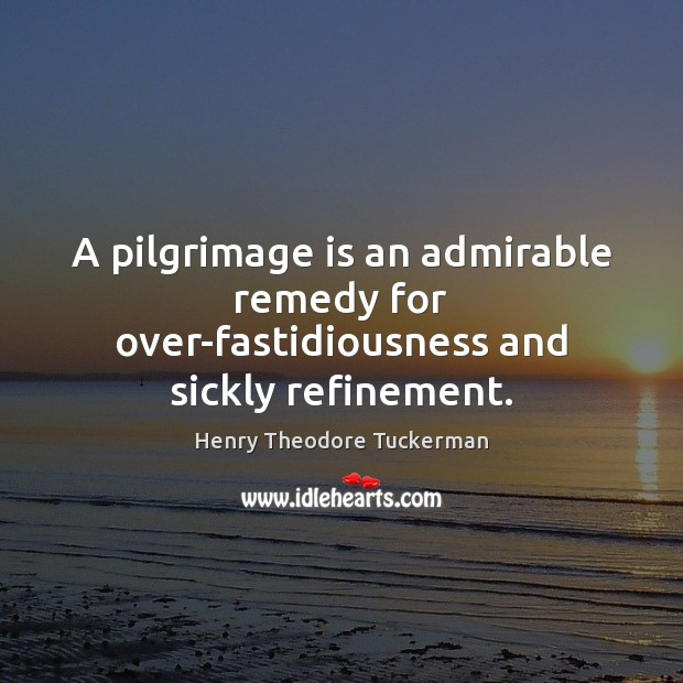 A pilgrimage is an admirable remedy for over-fastidiousness and sickly refinement. Henry Theodore Tuckerman Picture Quote
