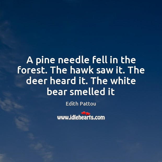 A pine needle fell in the forest. The hawk saw it. The Image