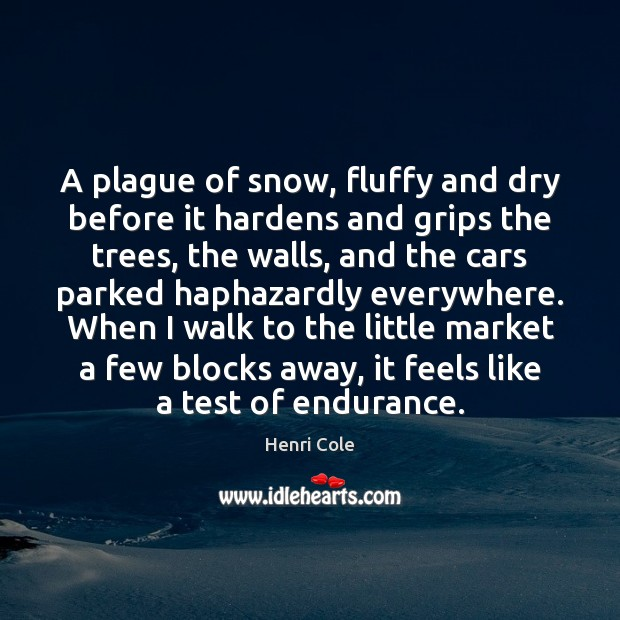 Image, A plague of snow, fluffy and dry before it hardens and grips