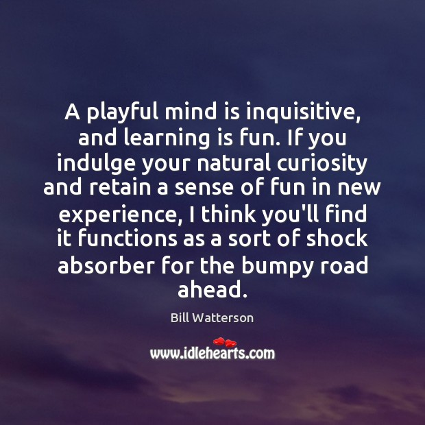 A playful mind is inquisitive, and learning is fun. If you indulge Bill Watterson Picture Quote