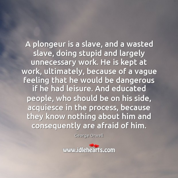 A plongeur is a slave, and a wasted slave, doing stupid and Image