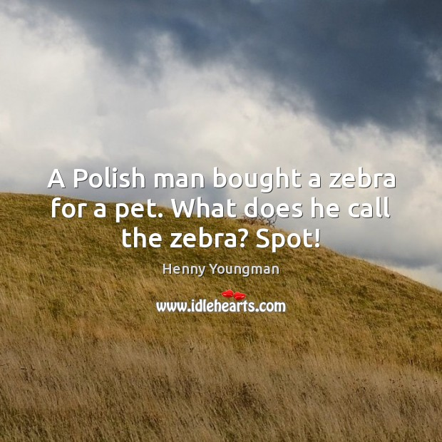 Image, A Polish man bought a zebra for a pet. What does he call the zebra? Spot!