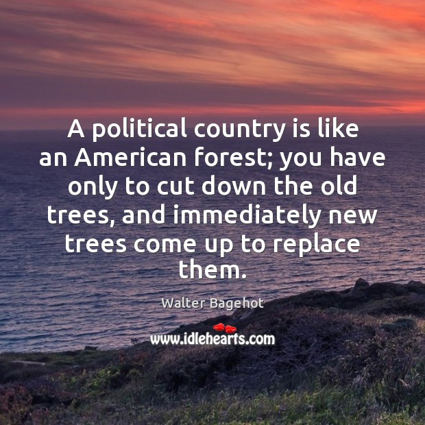 Image, A political country is like an American forest; you have only to