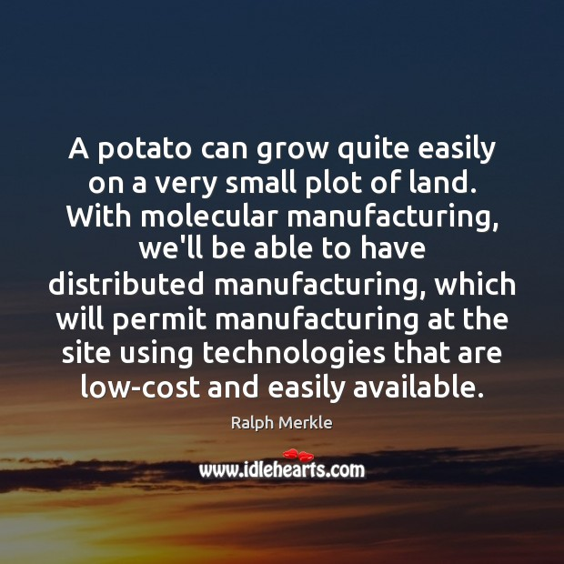 A potato can grow quite easily on a very small plot of Image