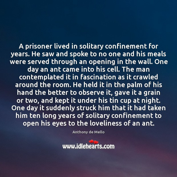 A prisoner lived in solitary confinement for years. He saw and spoke Anthony de Mello Picture Quote