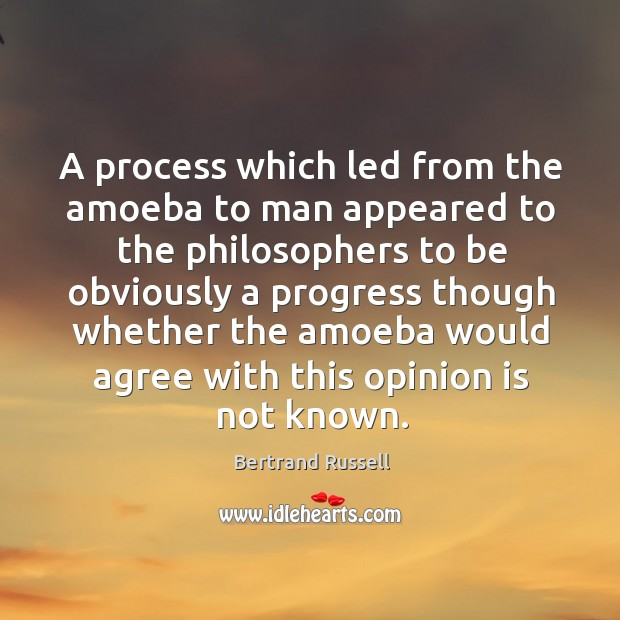 Image, A process which led from the amoeba to man appeared to the philosophers to be