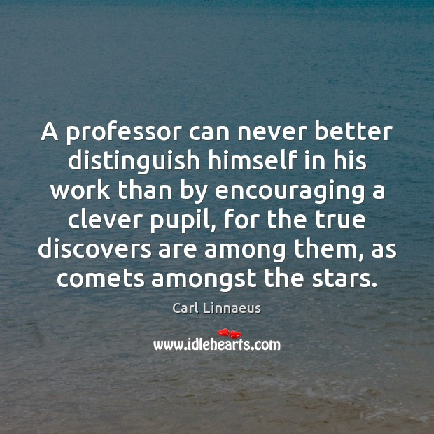 Image, A professor can never better distinguish himself in his work than by