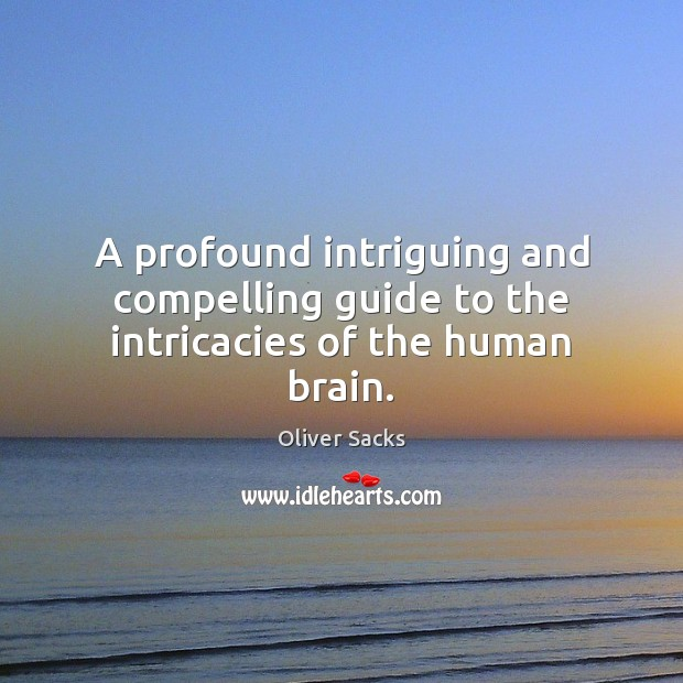 Image, A profound intriguing and compelling guide to the intricacies of the human brain.