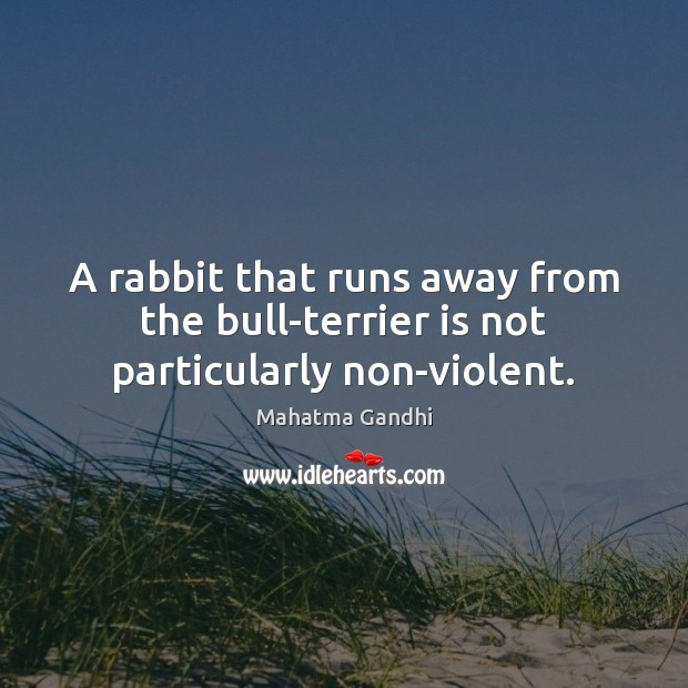A rabbit that runs away from the bull-terrier is not particularly non-violent. Image